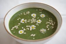 Kopřivová krémová polévka