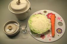 ingredience na kvašenou zeleninu