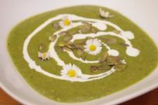 Přesnídávková polévka z kopřiv a jiného plevele