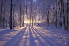 Strava na zimu