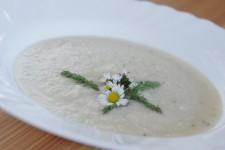 Řebříček na jarním talíři