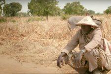 Hon na půdu – dnešní film