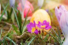 Tradiční Velikonoce – pobyt se zdravou stravou