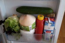 Pět studentek na privátě a jedna lednička