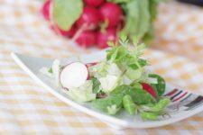 Salátek s koriandrem